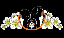 Logo_Christrosengaessle_Logo_250p